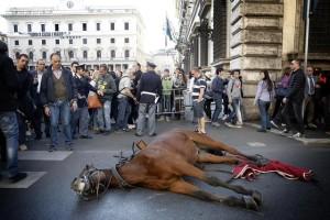 Un cavallo a terra per un malore davanti a Palazzo Chigi, Roma 30 ottobre 2014. ANSA/GIUSEPPE LAMI